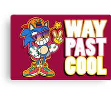Way Past Cool, Dude! Canvas Print
