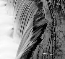 Over the Falls 3 by Lisa Cook
