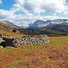 Ennerdale Sheepfold by seanduffy