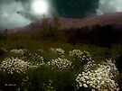 Purple Mountain Meadow by RC deWinter