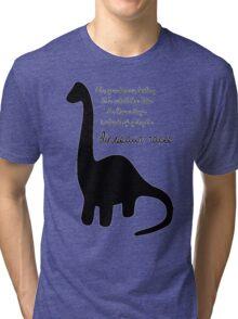 Dinosaur Races Tri-blend T-Shirt