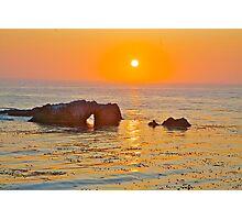 Sea Ranch California Photographic Print