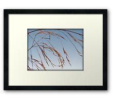 Whispering Wind Framed Print