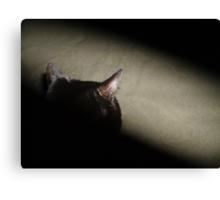 Matrix Kitty Canvas Print