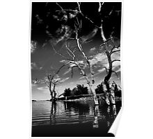 Dead Trees in the water. Aurora reservoir. Colorado. #10 Poster