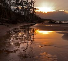Red Beach turns Gold by Barbara Burkhardt