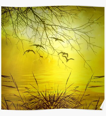 Beautiful Landscape with Birds Poster