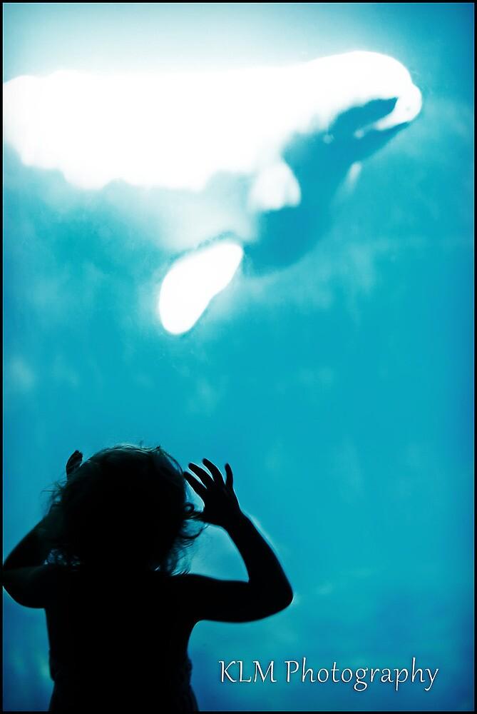 Teasing Whale by Morriki
