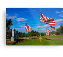 Patriot Blue Metal Print
