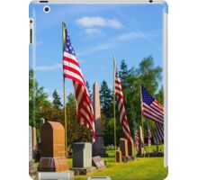 Stone Row iPad Case/Skin