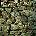 Stone Wall by PhotosbyAaron