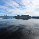 Lake Pedder - s.w. Tasmania by gaylene