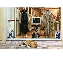 The fur shop Photographic Print