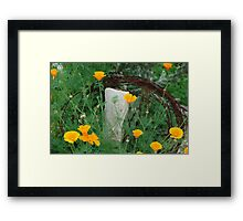 Texas poppies with barb wire Framed Print