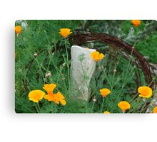 Texas poppies with barb wire Canvas Print