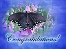 Congratulations Greeting Card - Spicebush Swallowtail Butterfly by MotherNature
