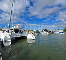 Another Entrant in the Brisbane to Gladstone Yacht race. by Ralph de Zilva