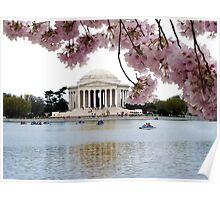 Blossoms Over Jefferson Poster