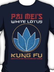 Your so-called kung-fu is really quite pathetic T-Shirt