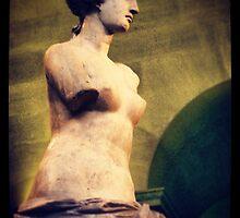 Instant Venus de Milo  by Catherine C.  Turner