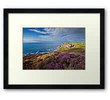 Heather on the cliffs at Levant Mine, Cornwall. Framed Print