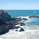 McCauleys Headland, Coffs Harbour Regional Park, NSW by Adrian Paul