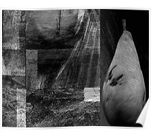 grey decay.... still life Poster