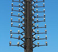 oldest telegraph pole by mrivserg