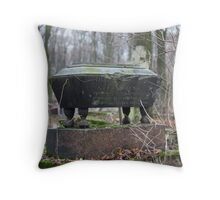 old coffin Throw Pillow