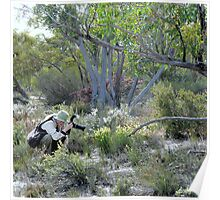 1. Mallee Forest and Wild Flowers Poster