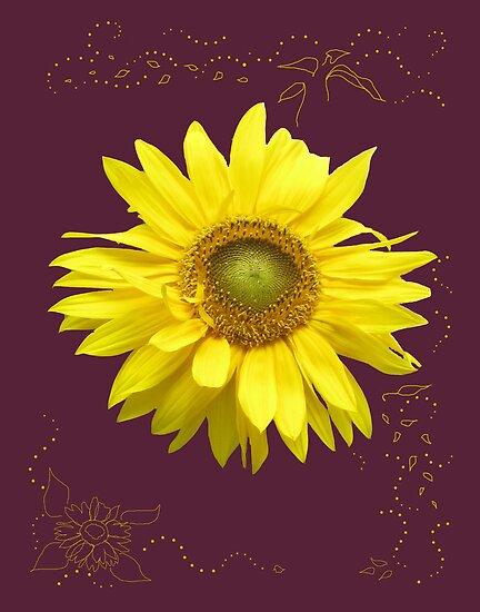 Sunflower by Anne Bonner