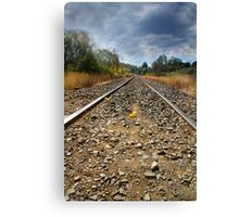 Tea Tree Track - Tasmania Canvas Print