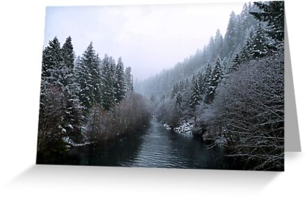 Snow On The Upper McKenzie River by Charles & Patricia   Harkins ~ Picture Oregon