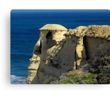 Shaped by Time Canvas Print