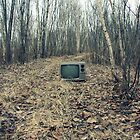 Abandoned Television by Everett Marcolini