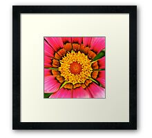 Centre of Attention! Framed Print