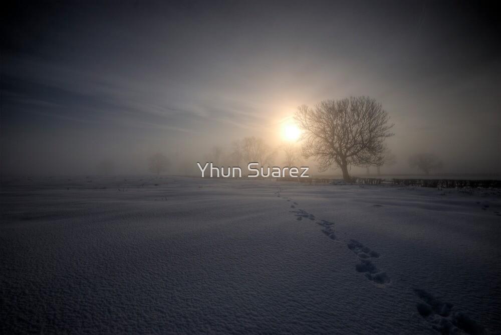 Hope by Yhun Suarez
