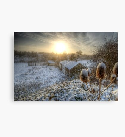 Country Snow And Sunrise Canvas Print