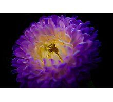 Purple Mum 2 Photographic Print