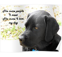 The More People I Meet the More I Love My Dog Poster