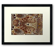 Geometric Patterns No. 45 Framed Print