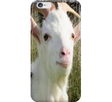 Goat Portrait iPhone Case/Skin