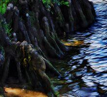 Water's Edge by photoworksbyjd