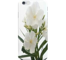 White Oleander Flowers Close Up Isolated On White Background  iPhone Case/Skin
