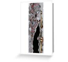 Encased Greeting Card