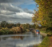 Knowle Canals by Chris Fletcher