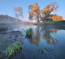 Morning at the river by Stanislav Salamanov