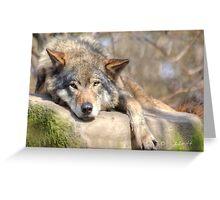 ...I need my nap...  Greeting Card
