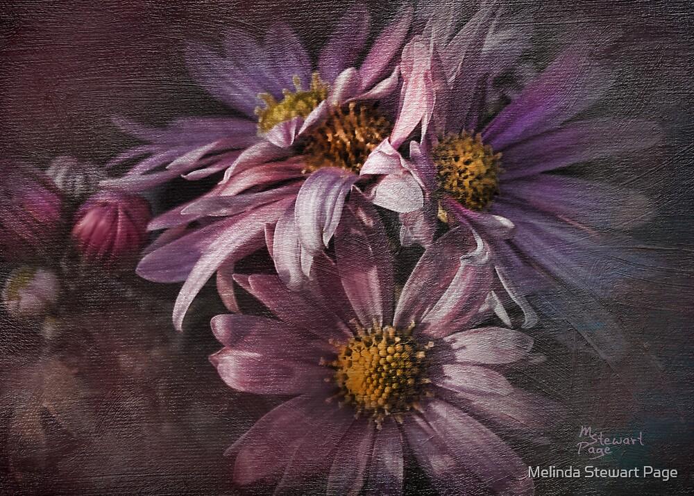 """Black Dahlia"" by Melinda Stewart Page"