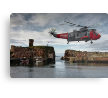 Hovering over Dunbar Harbour Metal Print